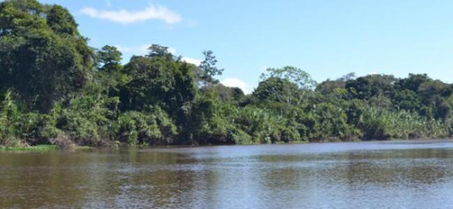 Zonas de frontera y sustentabilidad en la Amazonia