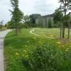 Ciudadanías ambientales y meta ciudadanías ecológicas