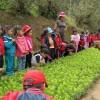 Educación para el desarrollo sostenible, ¿nada nuevo bajo el sol?