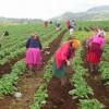 Las mujeres no se rinden: ecofeminismos y desarrollos