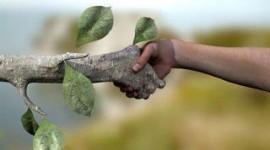 Hacia una ecología política de la esperanza
