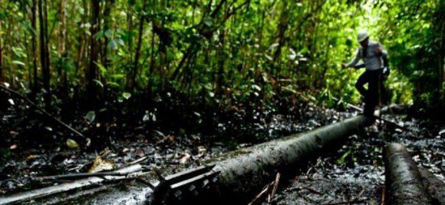 Extrahección: violación de derechos en la apropiación de la naturaleza