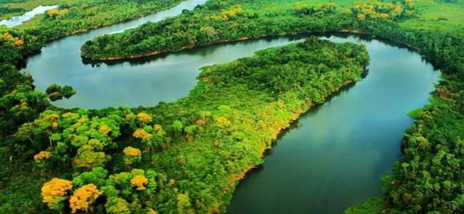 Marina Silva: los valores de la selva